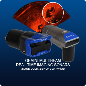 Gemini Real-Time Multibeam Imaging Sonars